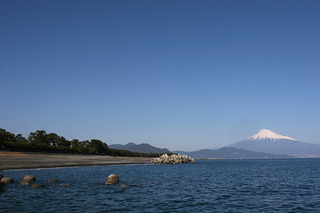 Mt_Fuji_at_Mihonomatsubara.jpg